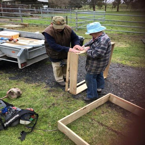 Setting up the dung beetle nursery requires concentrated assembly skills