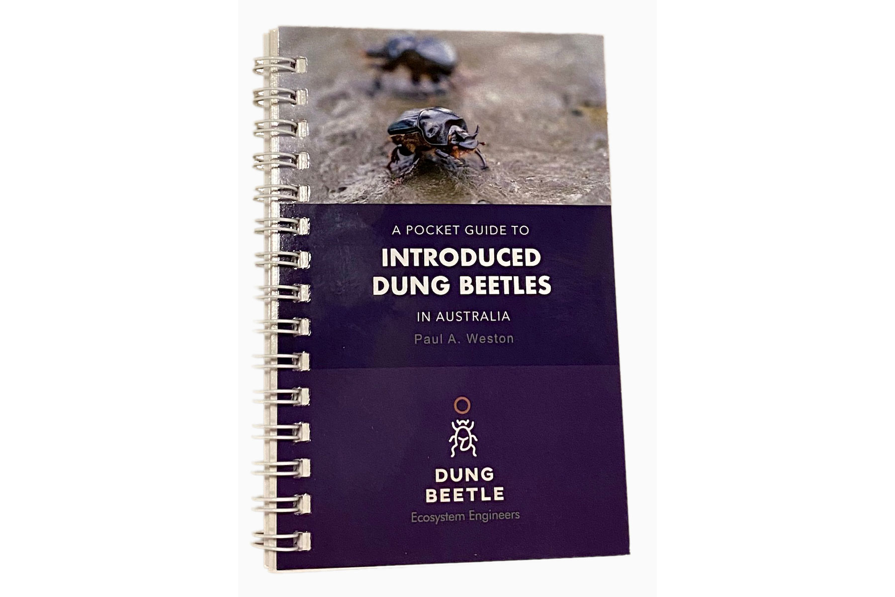 Dung Beetle pocket guide